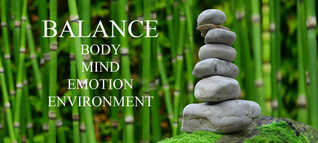 Wellness Coaching Balance